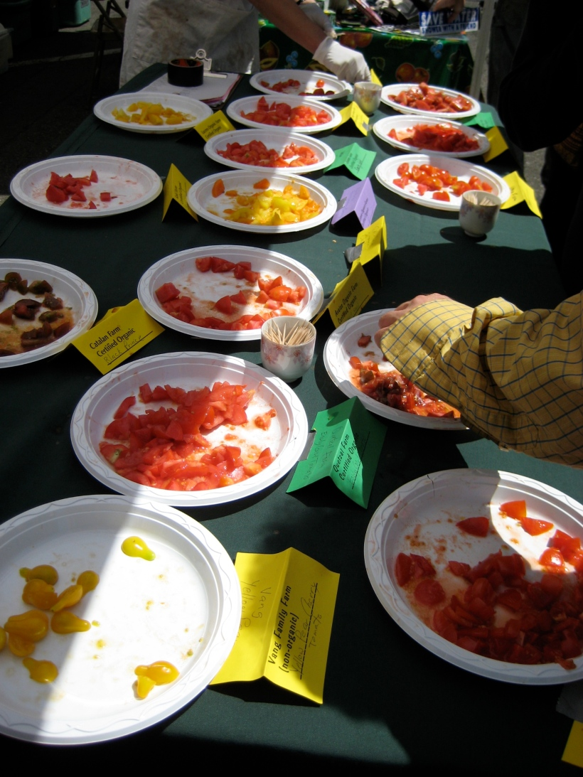 Today was tomato tasting day at the market.  Each farm donates produce to this table so that customers can have a one-stop comparison shopping experience.