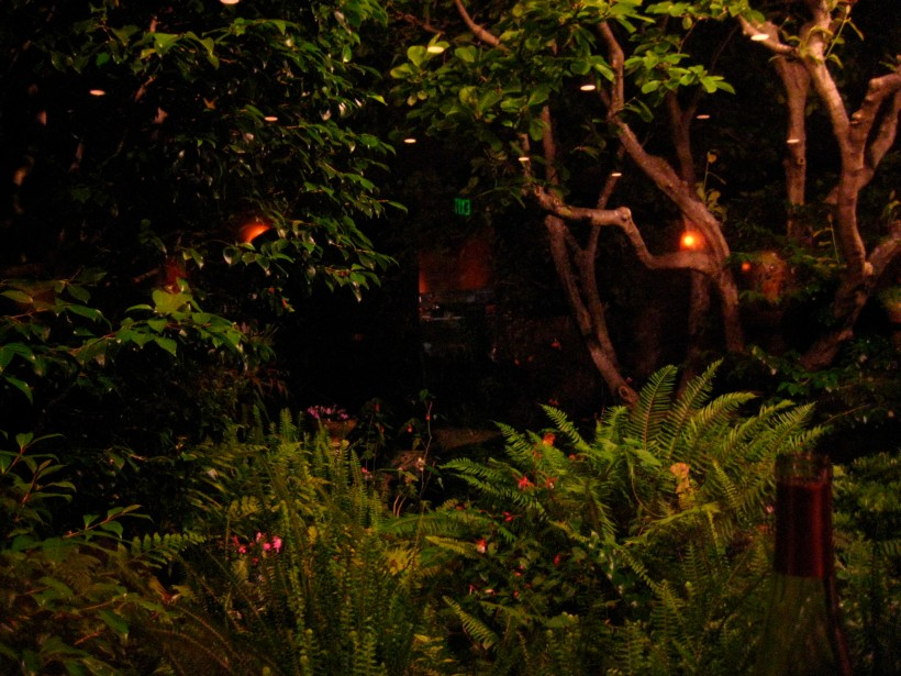 View of the garden from the dining room at Rivoli. Quiet charming.