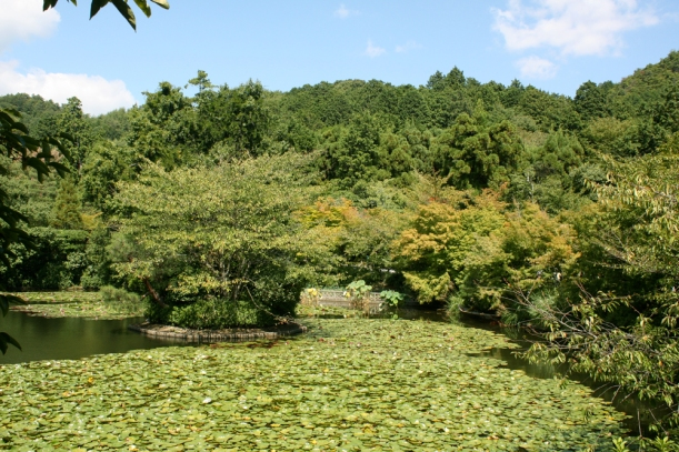 The beautiful pond at Ryoan-ji